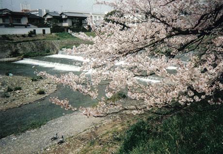 kyototakanogawa
