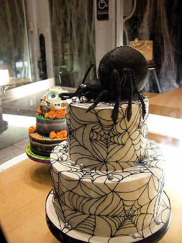 Black Spider Halloween Cake