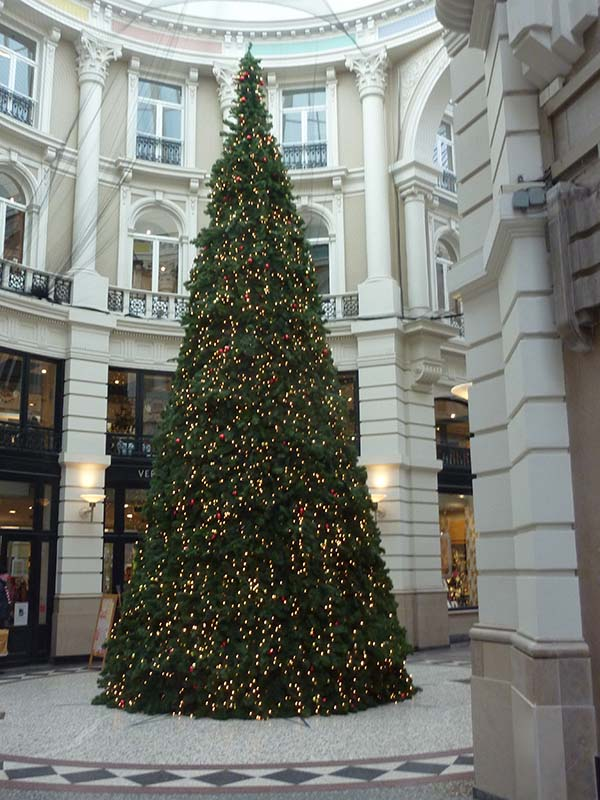 Merry Christmas from The Hague